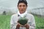 Primer melón en forma de corazón